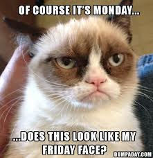 grumpy-cat-monday-2